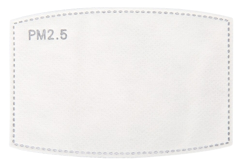 PM2.5 filters which are to be used by inserting into a face mask